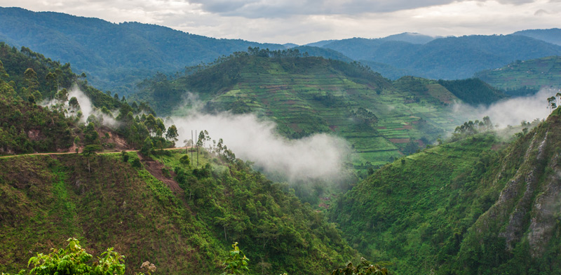 אוגנדה / צילום: Shutterstock, א.ס.א.פ קריאייטיב
