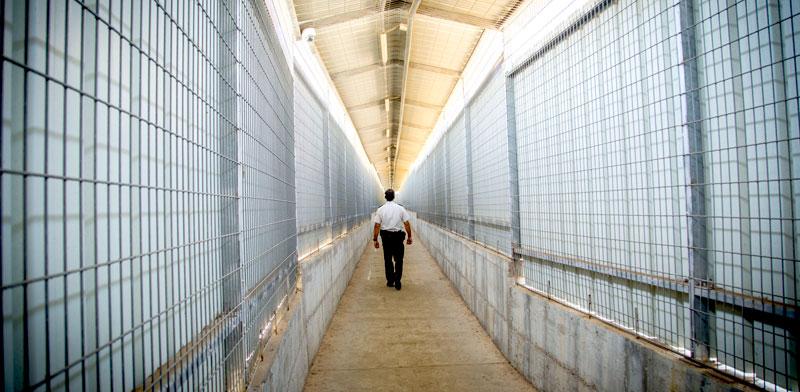 """בית כלא. 1,000 אסירים בארה""""ב ישוחררו / צילום: אלון רון"""