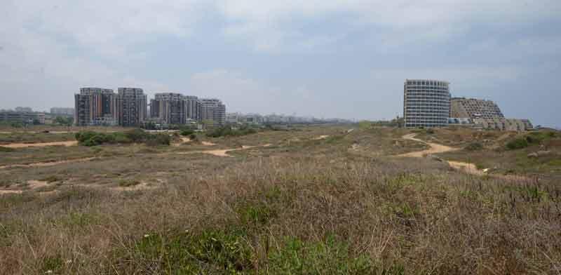 שטח התוכנית בצפון תל אביב / צילום: איל יצהר