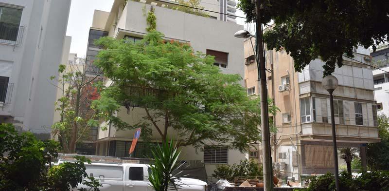 רחוב שולמית 13 תל-אביב / צילום: בר אל