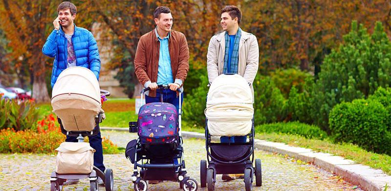 זוגות חד מיניים ייהנו מהקלות / צילום: Shutterstock א.ס.א.פ קרייטיב