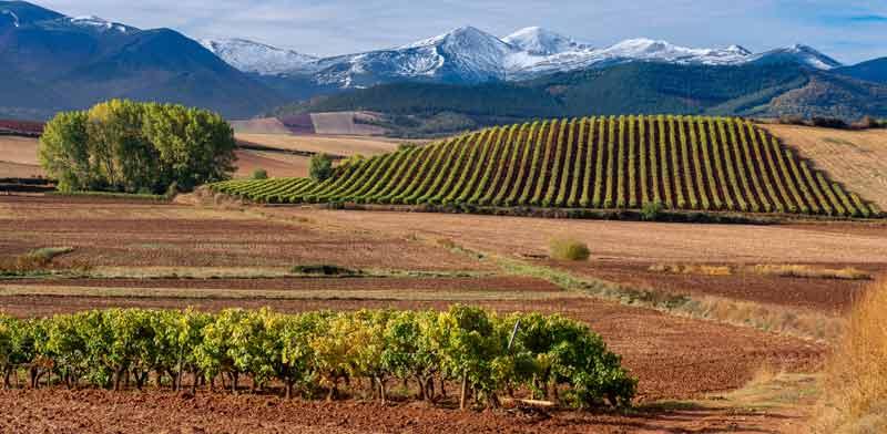 חבל ריוחה בספרד / צילום: Shutterstock | א.ס.א.פ קריאייטיב
