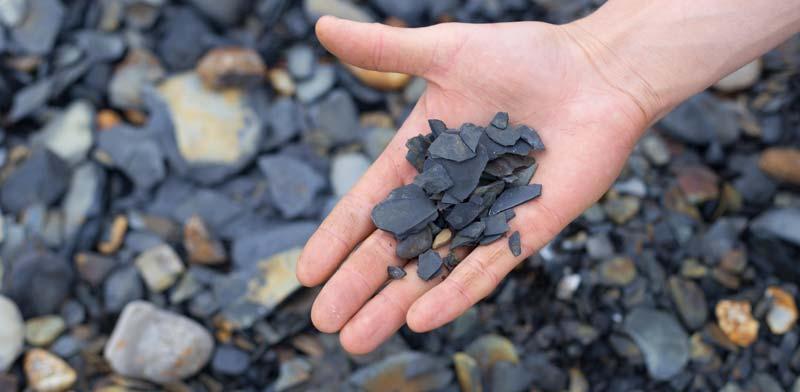חיפוש נפט וגז / צילום: Shutterstock, א.ס.א.פ קריאייטיב
