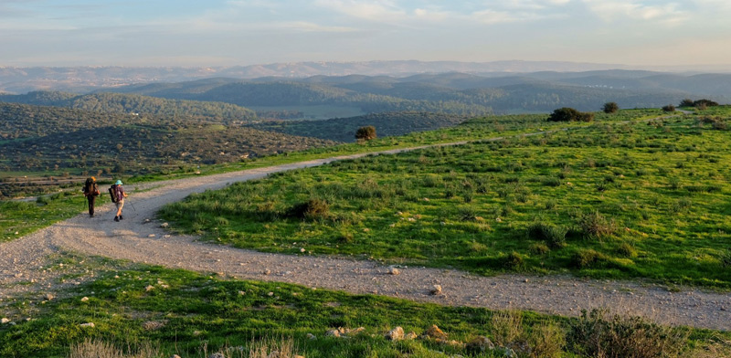 נוף על שביל ישראל בין עין קובי  לנתיב הלה/ צילום: בן מאור