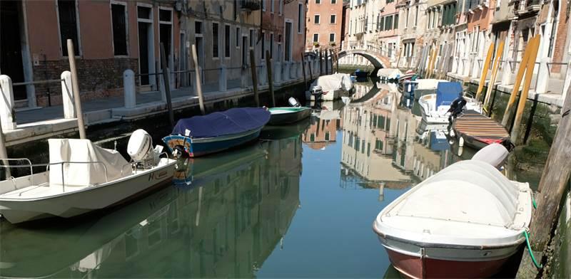מים נקיים בתעלות ונציה לאחר העוצר שבה העיר נמצאת / צילום: מנואל סילבסטרי, רויטרס
