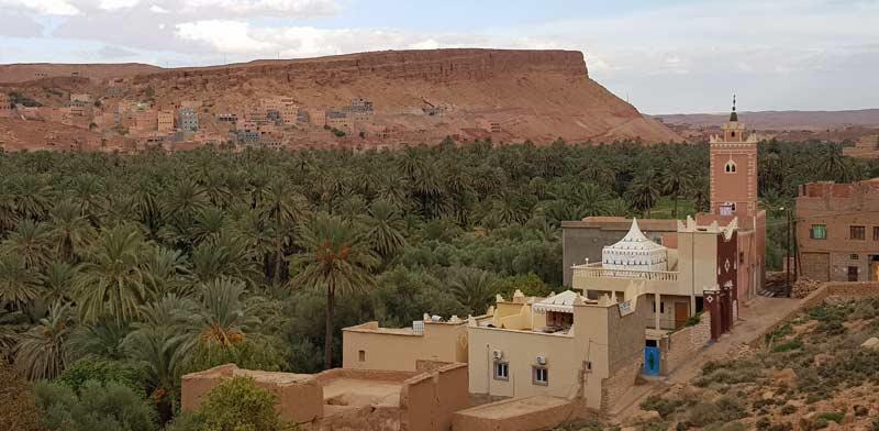 עמק הטודרה במרוקו / צילום: אורלי גנוסר