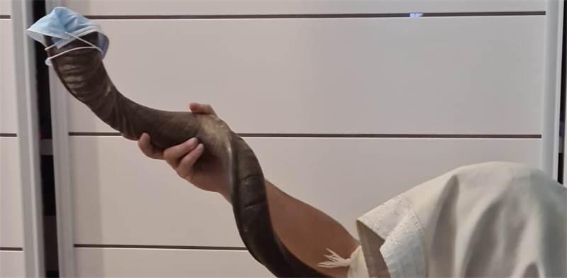 שופר בימי קורונה. ממליצים לעטוף את השופר במסכה כדי להנמיך הפצה / צילום: תמונה פרטית