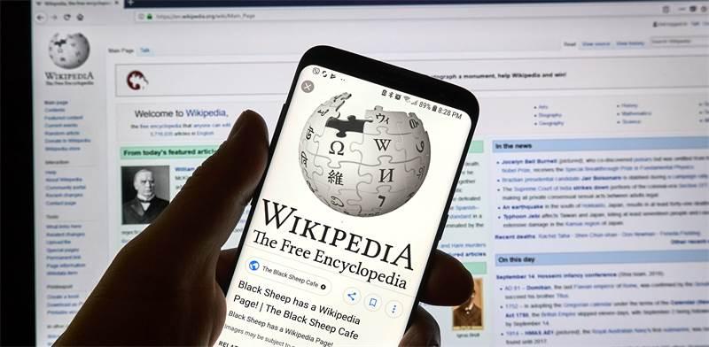 ויקיפדיה / צילום: שאטרסטוק