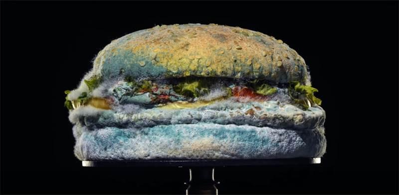 ההמבורגר מלא העובש בפרסומת של ברגר קינג / צילום: צילום מסך מפייסבוק