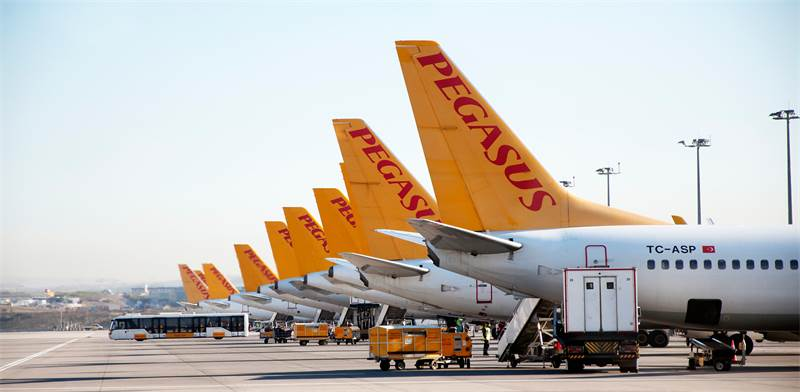 חברת התעופה פגסוס / צילום: שאטרסטוק