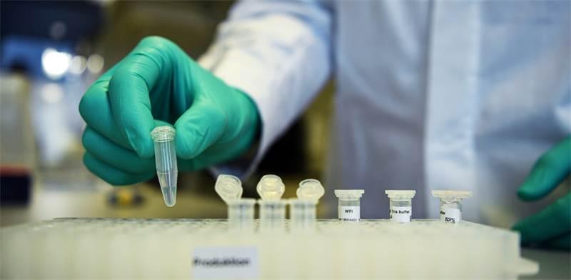 חיסונים / צילום: Andreas Gebert, רויטרס