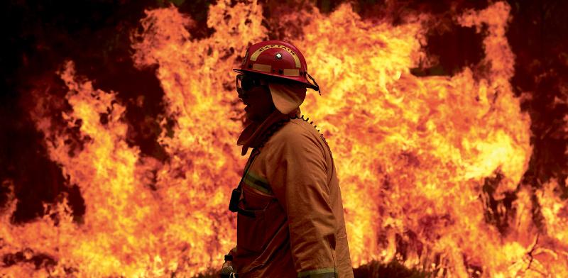כבאים מכבים את האש המשתוללת / צילום: Gettyimages/Anadolu Agency