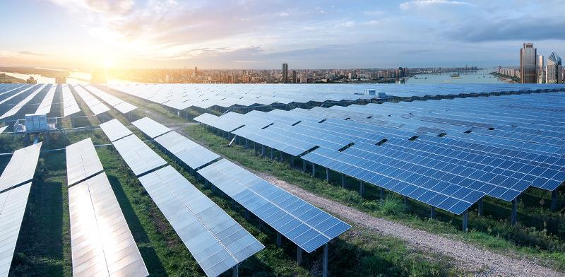 פאנלים סולאריים בשנחאי / צילום: shutterstock