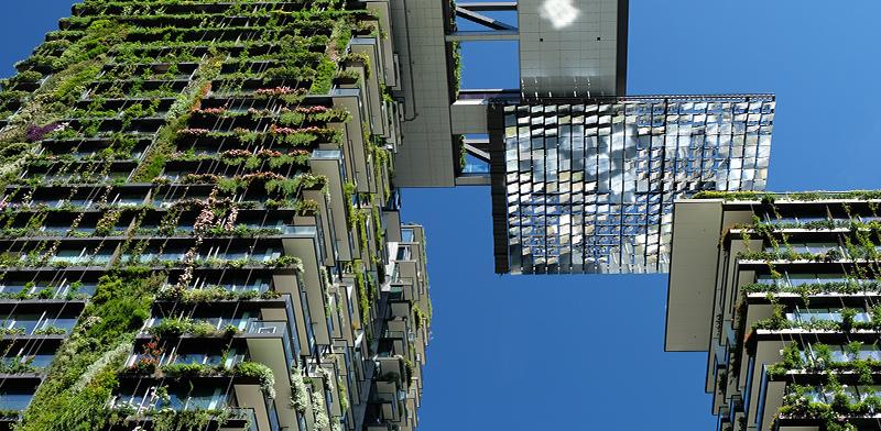 בנייה ירוקה באוסטרליה / צילום: shutterstock