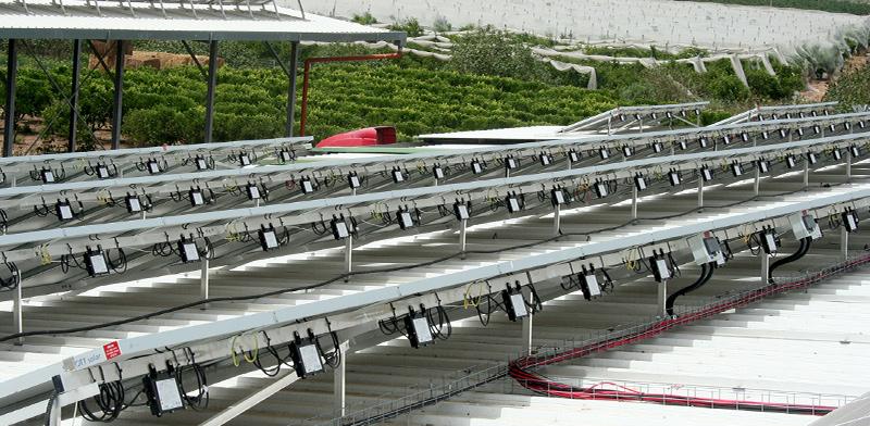 """לוחות סולאריים של סולאראדג' / צילום: יח""""צ"""