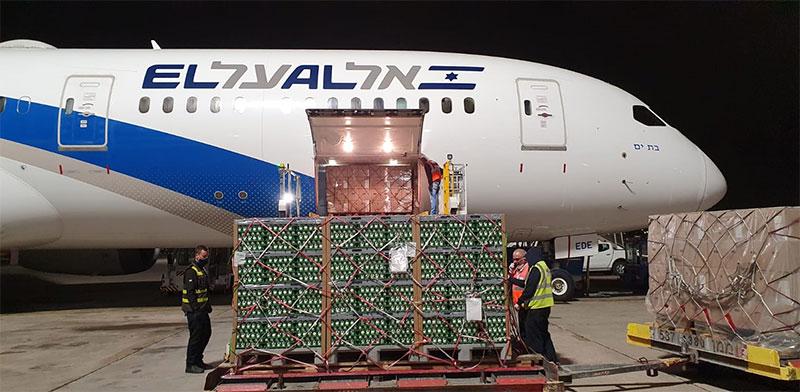 משלוח של כמיליון ביצים נחת בישראל / צילום: לסר