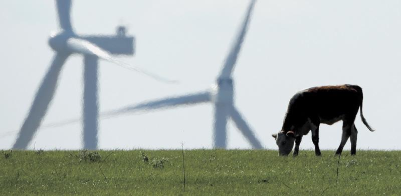 שדה תחנות רוח. האם הבנקים המרכזיים יקצו משאבים לתמיכה? / צילום: Charlie Riedel, Associated Press