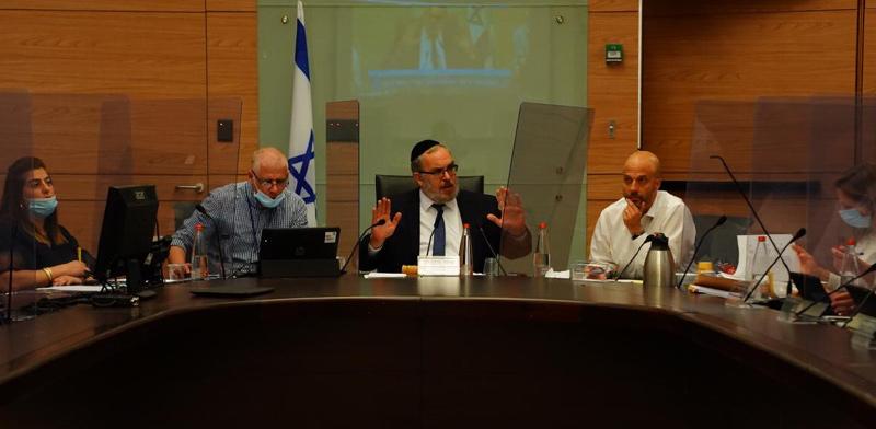 מתוך ועדת החוקה / צילום: עדינה ולמן, דוברות הכנסת