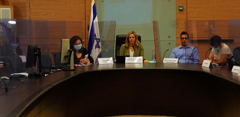 ועדת הפנים ואיכות הסביבה בראשות מיקי חיימוביץ' / צילום: עדינה ולמן, דוברות הכנסת