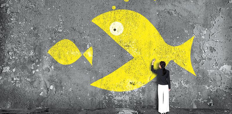 מיזוגים רבים בשוק שירותי המחשוב / צילום: shutterstock, שאטרסטוק