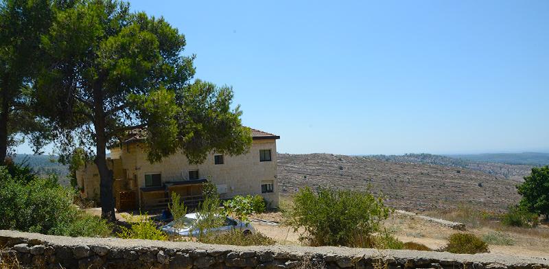 נטף, הרי יהודה / צילום: איל יצהר, גלובס