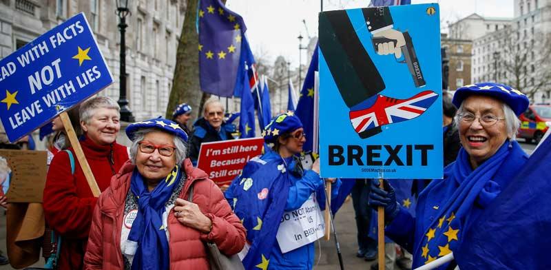 מתנגדי ברקזיט מוחים ברחוב דאונינג בלונדון / צילום: רויטרס, HENRY NICHOLLS