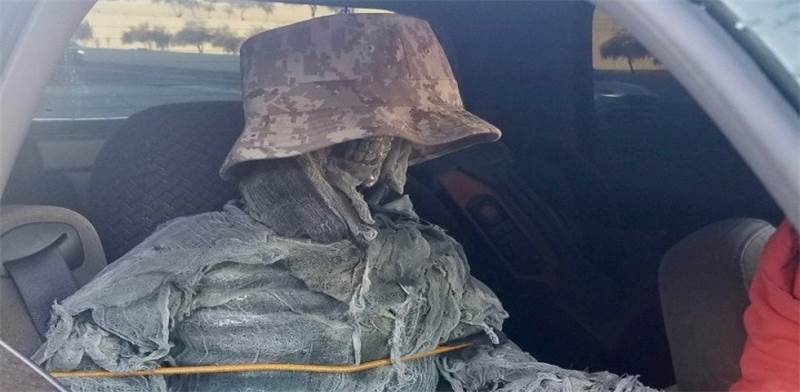שלד במושב הנוסע ברכב / צילום: Arizona Dept. Of Public Safety