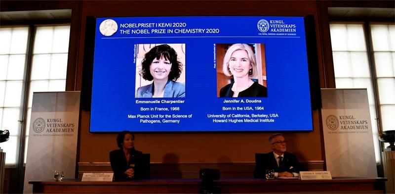 ההכרזה על הזכייה של פרופ' עמנואל שרפנטייה ופרופ' ג'ניפר דודנא בפרס הנובל בכימיה / צילום: TT News Agency/Henrik Montgomery, רויטרס