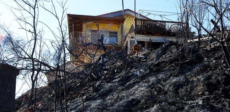 נוף הגליל, אחרי השריפה. כילתה 4,700 דונם / צילום: איל יצהר