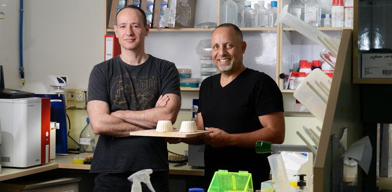 """ד""""ר אייל אפרגן (מימין) ופרופ' תמיר טולר. הרעיון הוא """"לאלף"""" את השמרים / צילום: איל יצהר"""