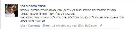 כרמל שאמה / צילום: מתוך הפייסבוק