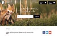 """דף הבית של האפליקציה """"סיקרט"""" / צילום מתוך האתר"""