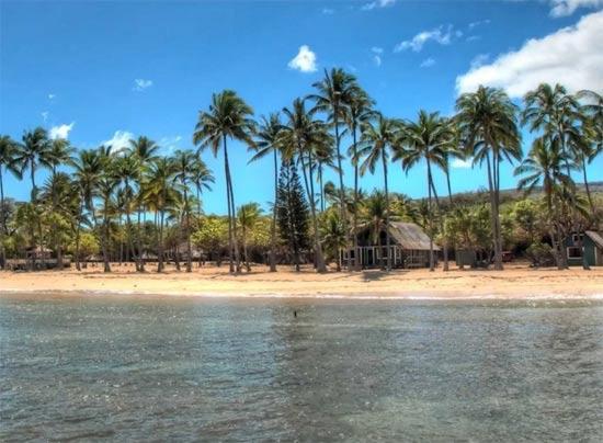האי של לארי אליסון / צילום מסך מתוך ביזנס אינסיידר