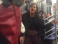 קטטה המונית ברכבת התחתית של ניו יורק / צילום: וידאו